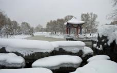 雪暖寒溪图片