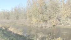 密西西比州爱荷华河回水股票视频