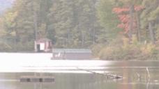 平静的秋天池塘股票视频 视频免费下载