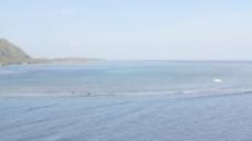 茉莉礁石与泻湖泛股录像