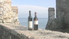 意大利Sirmione酒瓶的护城河股票视频