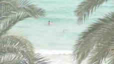 人们在海里游泳用棕榈叶2股票的录像