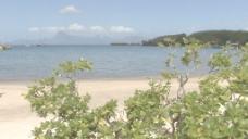 帕皮提的男孩走在海滩股票视频