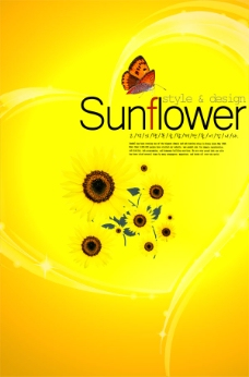 向日葵黄色背景