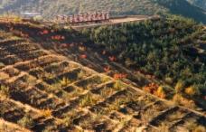 能源陕北图片