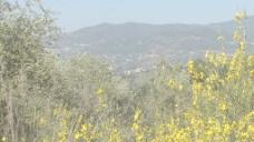 西西里岛的山股票视频缩放 视频免费下载