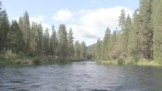 俄勒冈Metolius河15股票的录像 视频免费下载