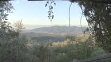意大利托斯卡纳山谷附近的卢卡股票视频 视频免费下载