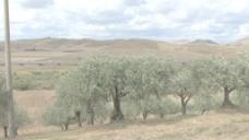 西西里岛景观77股票的录像 视频免费下载