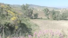 西西里岛附近恩纳97股票的录像 视频免费下载