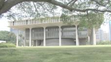 火奴鲁鲁夏威夷州议会大厦的树枝在股票的录像 视频免费下载