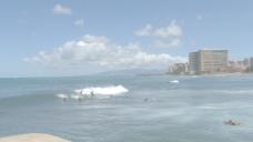 威基基的冲浪者3股票的录像 视频免费下载