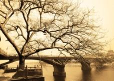 桥头冬日回忆图片