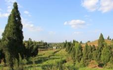 田园景观图片