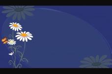炫彩花纹视频素材模板下载