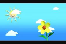 花纹背景视频素材