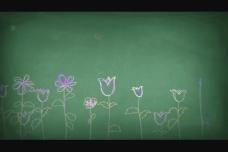 炫彩花纹视频素材