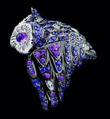猫头鹰珠宝图片