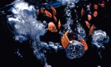 欧米茄omega seamaster图片