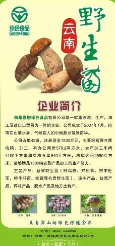 野生菌展架图片