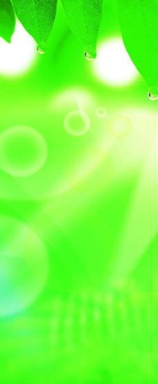 背景 壁纸 绿色 绿叶 设计 矢量 矢量图 树叶 素材 植物 桌面 228_554