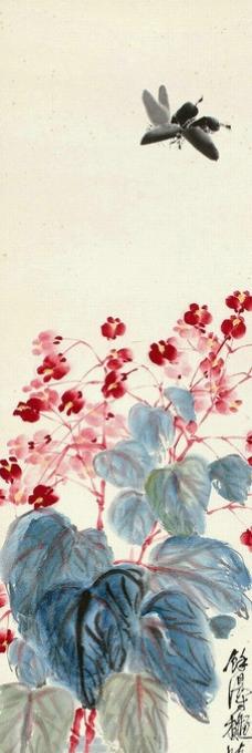 海棠蛱蝶图片
