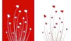 情人节的爱情之花