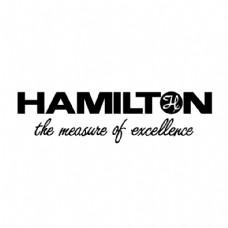 汉密尔顿0
