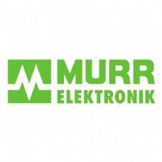 穆尔电子公司