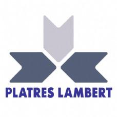 普拉特斯- 1