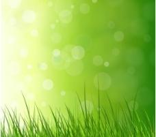 梦幻光斑绿色草丛矢量素材