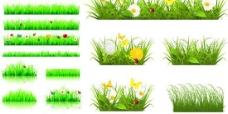 绿色小草野花矢量素材