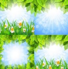 春雨过后菊花绿叶矢量素材