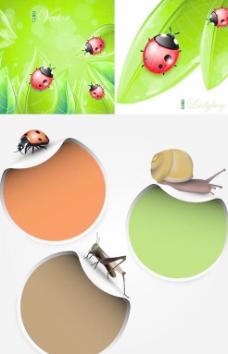 青翠树叶昆虫背景矢量素材