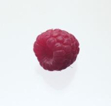 秧泡子图片