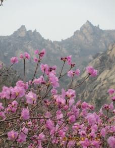 大珠山图片