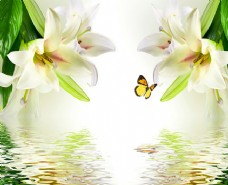 花朵 海报