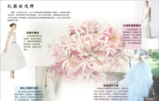 婚庆杂志设计图片