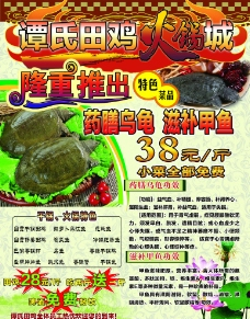 田鸡火锅海报图片