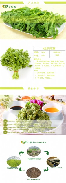 蔬菜茼蒿淘宝设计