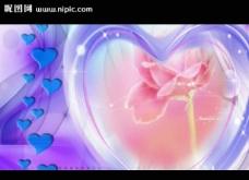爱心花朵婚礼视频素材