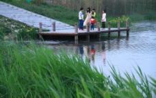 蔡家坡渭河湿地公园图片
