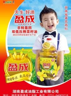 盈成菜籽油海报广告PSD素材