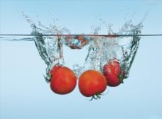 番茄背景图