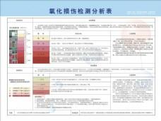 氧化损伤检测分析