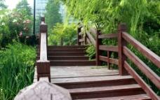 公园木桥图片