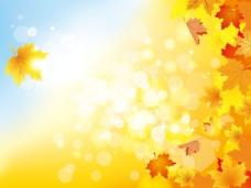 美丽的秋天的背景05矢量素材