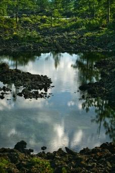 石塘林图片