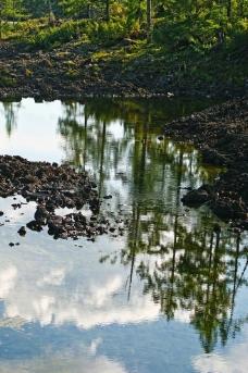 石塘林地貌风光图片