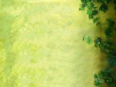 草绿色背景墙PPT